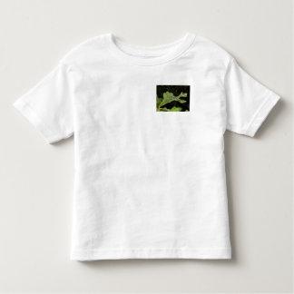 Wet Oak Leaf T Shirt