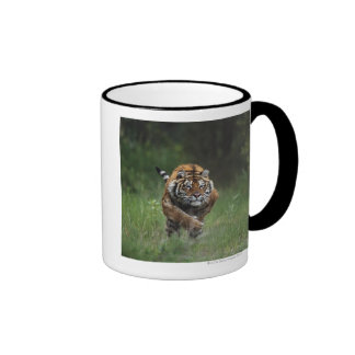 Wet Siberian Tiger Charging Ringer Mug