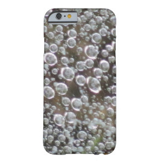 Wet Spider Web Barely There iPhone 6 Case