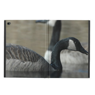 Wet Wild Canada Goose On Water Powis iPad Air 2 Case