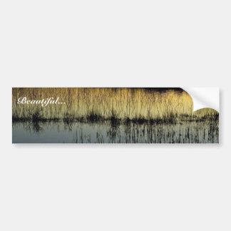 Wetland at sunset bumper sticker