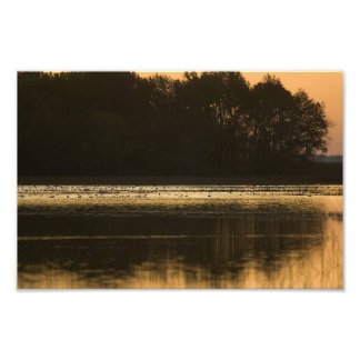 Wetland at Sunset in Silhouette Photo