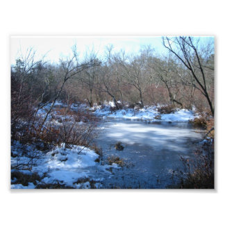 Wetland Ponds in Winter Photograph