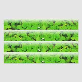 Wetland Sprout, large, fade. Rectangular Sticker
