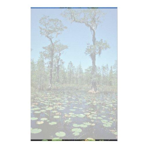Wetlands, Okefenokee National Wildlife Refuge Personalized Stationery