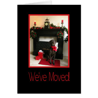 We've Moved - New Address Christmas German pointer Card