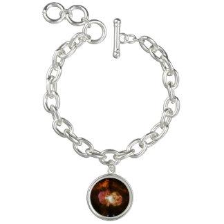 WFPC2 Image of Eta Carinae Bracelets