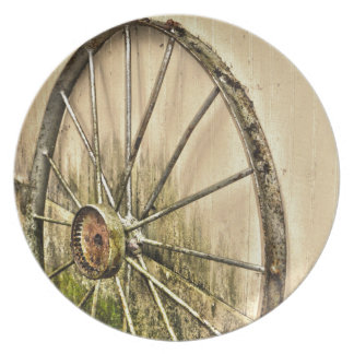 Whagon Wheel Plate