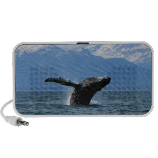 Whale Playtime; No Text Travel Speaker
