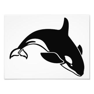 Whale Silhouette Photo Art