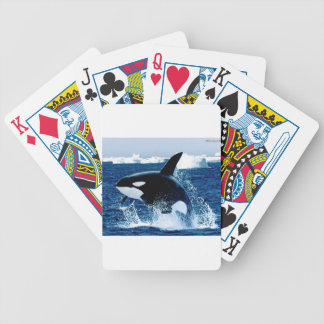 Whale Splash Bicycle Playing Cards