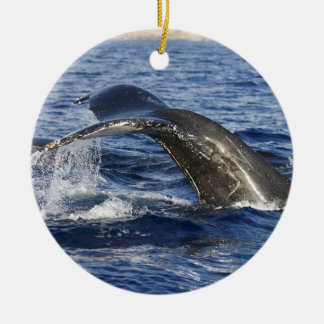 Whale Tail Ceramic Ornament