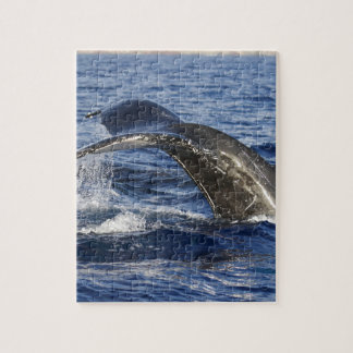 Whale Tail Jigsaw Puzzle