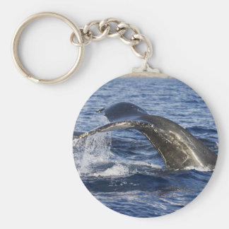 Whale Tail Key Ring