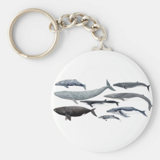 Whales and right whales key ring