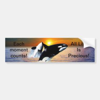 Whales at sunset bumper sticker