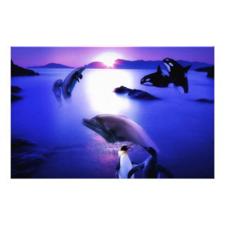 Whales dolphins penguins ocean sunset customised stationery
