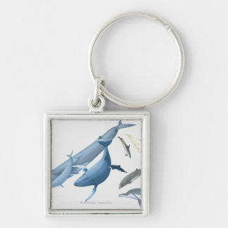 Whales Key Ring
