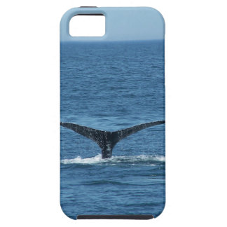 Whale's Tail iPhone Case