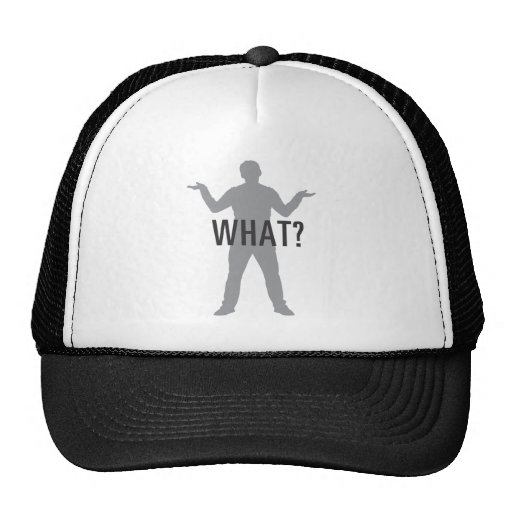 WHAT? MESH HATS