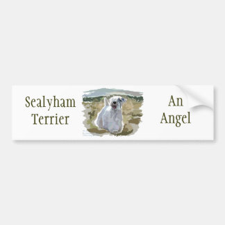 What an Angel! Bumper Sticker
