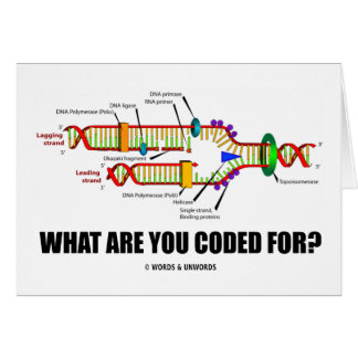 What Are You Coded For? (DNA Replication) Card