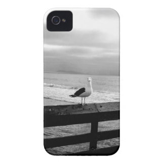 What are you looking at? iPhone 4 cover