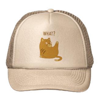 What? Trucker Hats