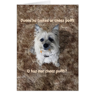 What Cheese Puffs? Blank Greeting Card