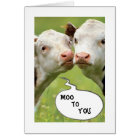 WHAT DO COWS HAVE TO DO WITH HALLOWEEN CARD