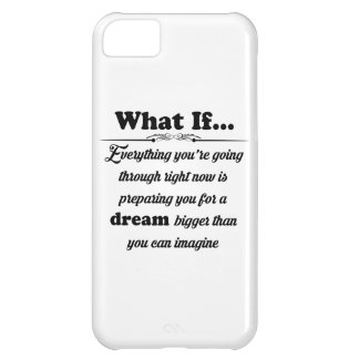 What if iPhone 5C case