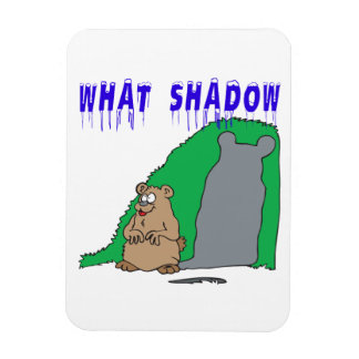 What Shadow Magnet