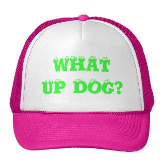 WHAT UP DOG? TRUCKER HAT