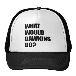 What Would Dawkins Do? Hats