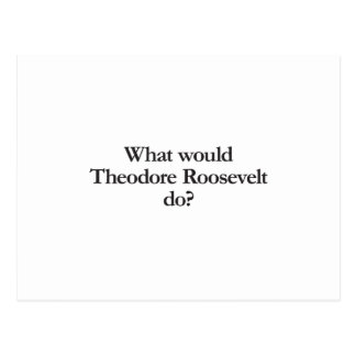 what would theodore roosevelt do post card