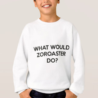 What Would Zoroaster Do? Sweatshirt