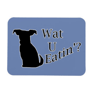 What You Eating Dog Magnet
