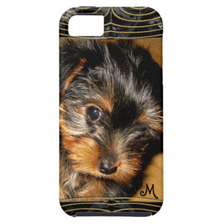 What you hiding Yorkie iPhone 5 Cover