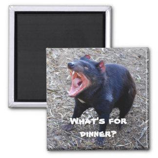 """""""What's for Dinner?"""" Tasmanian Devil Magnet"""
