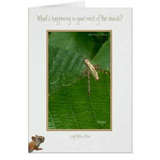 """What's Happening in your Neck of the Woods? Greeting Card"