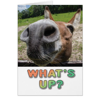 What's Up? Card