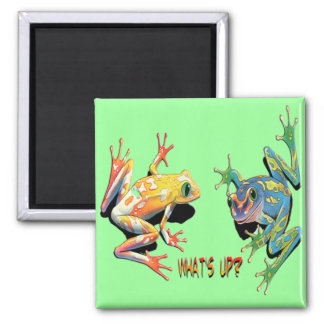 What's Up Frogs Square Magnet