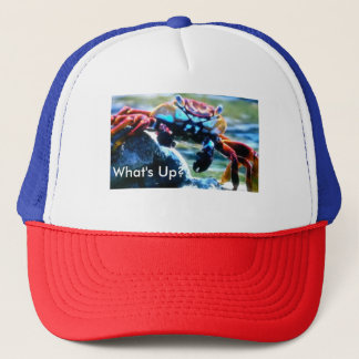 What's Up make your own hat