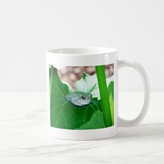 What's Up, Tree Frog Basic White Mug