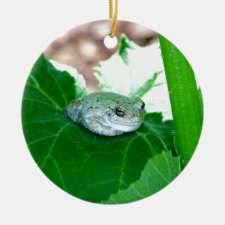 What's Up, Tree Frog Christmas Ornaments
