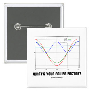 What's Your Power Factor? (Physics) Pinback Buttons