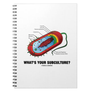 What's Your Subculture? (Prokaryote Bacterium) Journal
