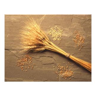 Wheat 21.5 Cm X 28 Cm Flyer