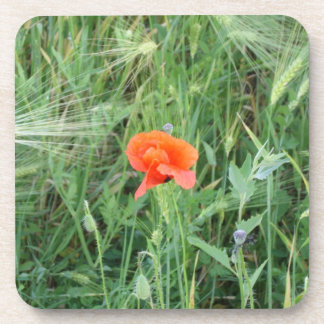 Wheat ears and poppy flowers 4 - Cork Coasters