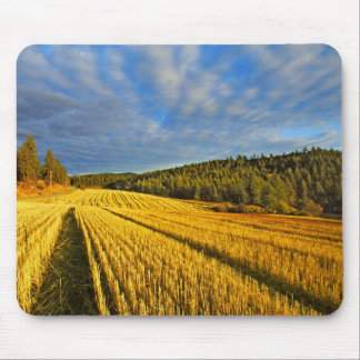 Wheat Field After Harvest Mouse Pad